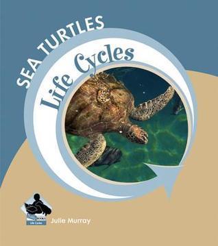 Sea Turtles Julie Murray