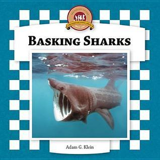 Basking Sharks Adam G. Klein