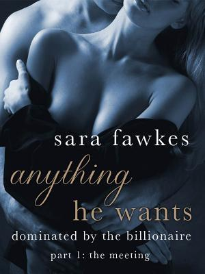 Anything He Wants 1: The Meeting (Dominated  by  the Billionaire, #1) by Sara Fawkes