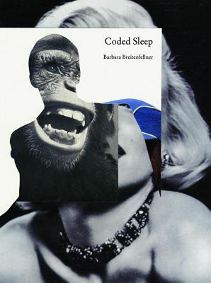 Coded Sleep Barbara Breitenfellner