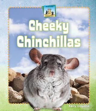 Cheeky Chinchillas  by  Kelly Doudna