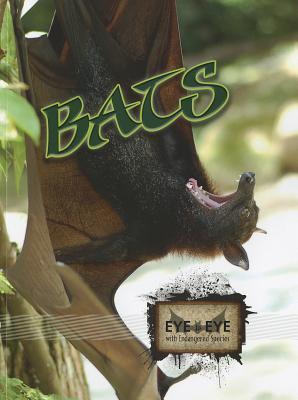 Bats Cindy Rodriguez