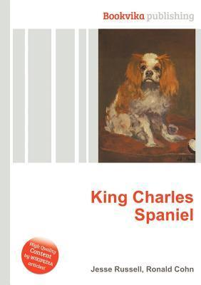 King Charles Spaniel Jesse Russell