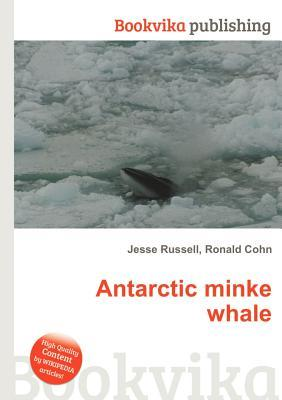 Antarctic Minke Whale  by  Jesse Russell