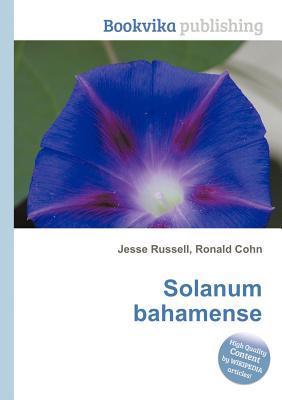 Solanum Bahamense  by  Jesse Russell