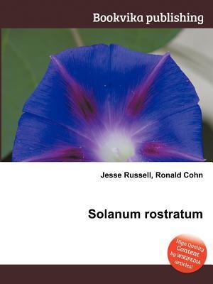 Solanum Rostratum Jesse Russell