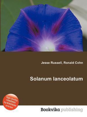 Solanum Lanceolatum Jesse Russell