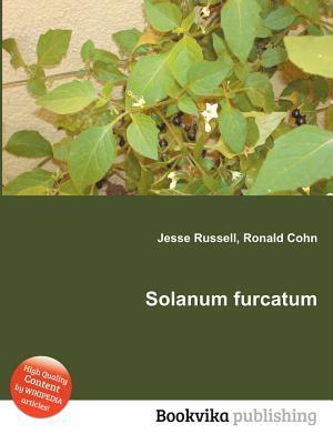 Solanum Furcatum  by  Jesse Russell