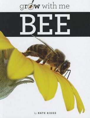 Bee  by  Kate Riggs