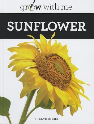Sunflower  by  Kate Riggs