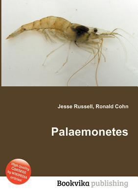 Palaemonetes  by  Jesse Russell
