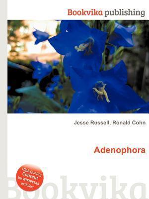 Adenophora Jesse Russell
