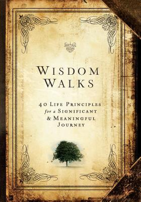 Wisdom Walks: 40 Life Principles for a Meaningful and Significant Journey  by  Dan Britton