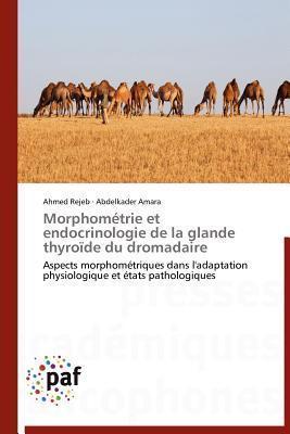 Morphometrie Et Endocrinologie de La Glande Thyroide Du Dromadaire Ahmed Rejeb