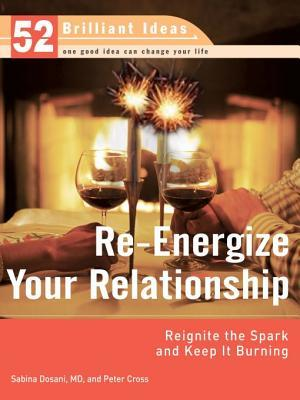 Re-Energize Your Relationship (52 Brilliant Ideas): Reignite the Spark and Keep It Burning  by  Sabina Dosani