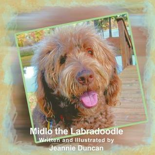 Midlo the Labradoodle  by  Jeannie Duncan