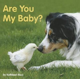 Are You My Baby?  by  Kathleen Rizzi