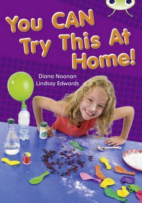 You Can Try This at Home Gold 2 Diana Noonan