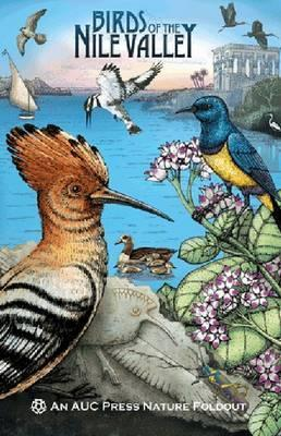 Birds of the Nile Valley: An AUC Press Nature Foldout Dominique  Navarro