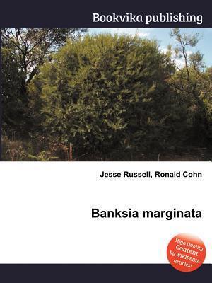 Banksia Marginata  by  Jesse Russell