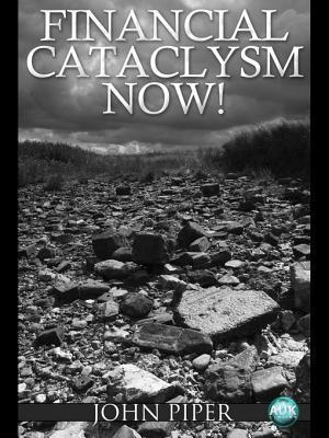 Financial Cataclysm Now!: Why Global Stock and Property Markets Are Now Going to Fall Faster and Further Than Ever Before - And How to Survive It John  Piper