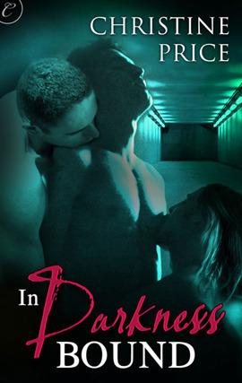 In Darkness Bound (The Society #1) Christine  Price