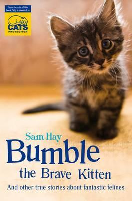 Hocus Pocus Hound. Samantha Hay  by  Samantha Hay
