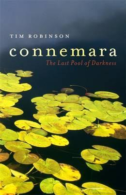 Connemara: The Last Pool of Darkness (Connemara Trilogy #2)  by  Tim Robinson