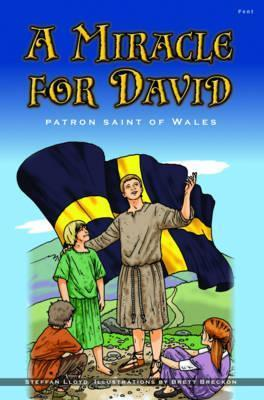 A Miracle For David  by  Steffan Lloyd
