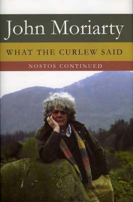 What the Curlew Said: Nostos Continued  by  John  Moriarty