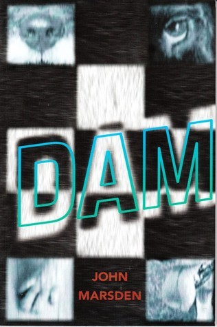 Dam  by  John Marsden