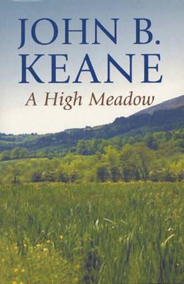 A High Meadow John Brendan Keane