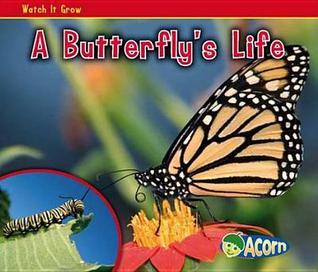 Butterflys Life Nancy Dickmann