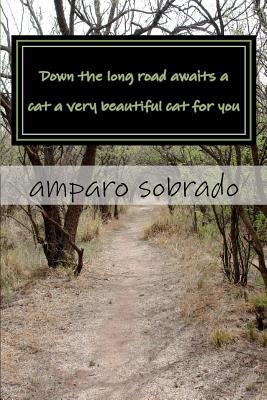 Down the Long Road Awaits a Cat a Very Beautiful Cat for You Amparo Sobrado