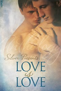 Silver Presents: Love is Love  by  Chris Quinton