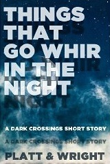 Things That Go Whir In The Night...  by  Sean Platt