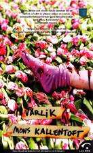 Vårlik (Malin Fors, #4) Mons Kallentoft
