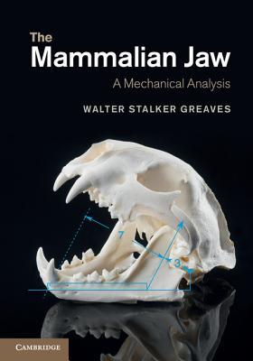 The Mammalian Jaw Walter Stalker Greaves