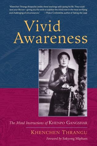 Vivid Awareness: The Mind Instructions of Khenpo Gangshar Kenchen Thrangu