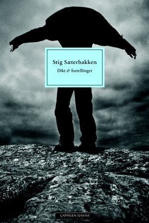 Dikt og fortellinger  by  Stig Sæterbakken