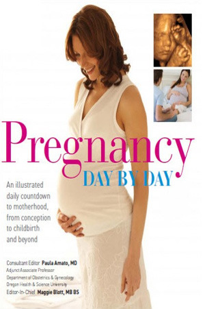 Pregnancy Day  by  Day: An Illustrated Daily Countdown to Motherhood, from Conception to Childbirth and Beyond by Paula Amato