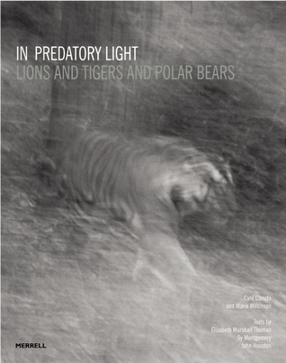 In Predatory Light: Lions and Tigers and Polar Bears  by  Cyril Christo