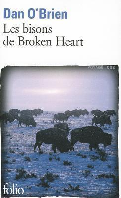 Les bisons de Broken Heart Dan OBrien