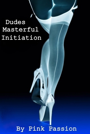 Dudes Masterful Initiation (The Dude Series #5)  by  Pink Passion
