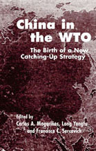 China in the WTO: The Birth of a New Catching-Up Strategy  by  Carlos A. Magarinos