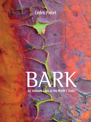 Bark: An Intimate Look at the Worlds Trees  by  Cedric Pollet