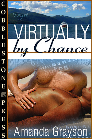 Virtually By Chance Amanda Grayson