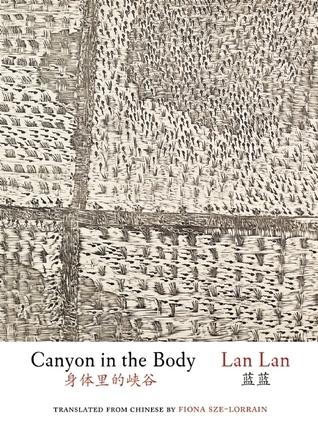 Canyon in the Body  by  Lan Lan
