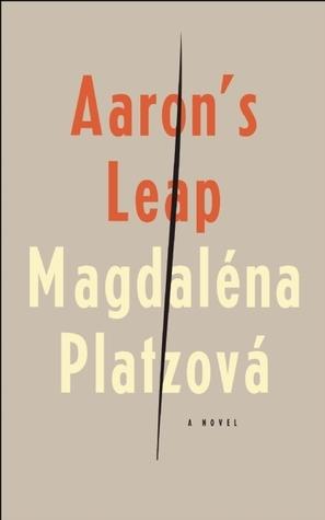 Aarons Leap  by  Magdaléna Platzová