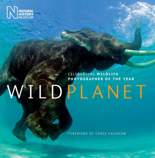Wild Planet: Celebrating Wildlife Photographer of the Year  by  Natural History Museum (London)
